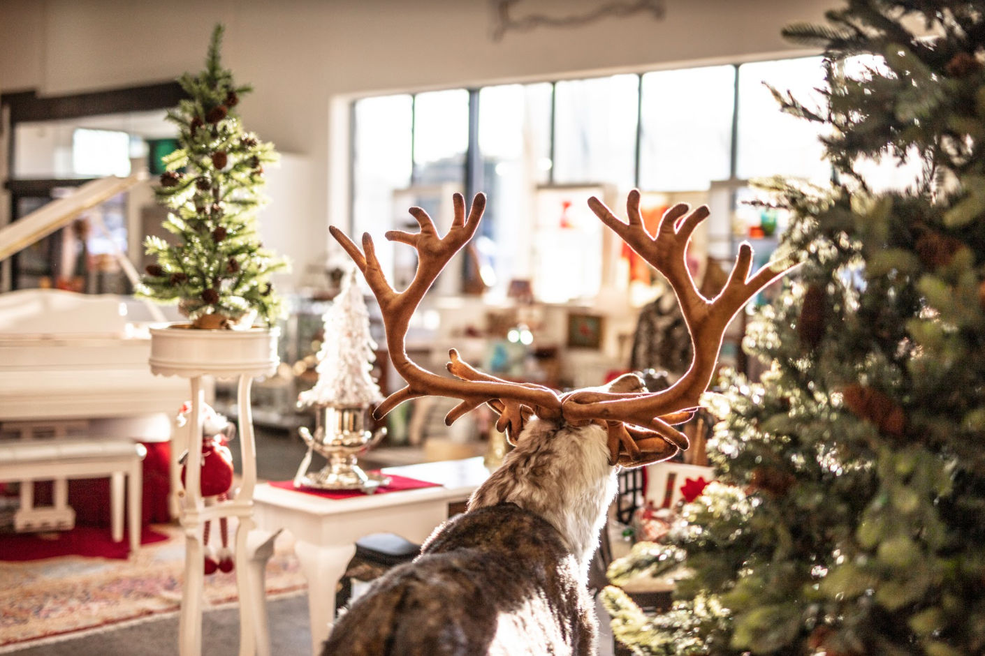 5 Ways Seasonal Decor Can Spread Joy Around Your Home this Holiday Season